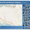 Dubrovnik - akcija čišćenja